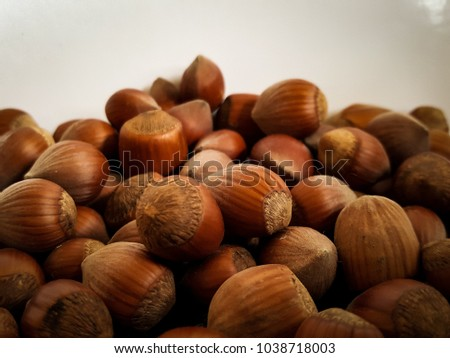 Close up of earthy warm brown hazelnuts