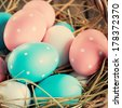 Close up of Easter Eggs Painted Pink, Blue colors and peas in the Basket  - stock