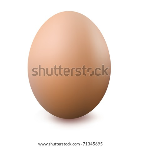 Close Up Of Egg, Isolated On White Background