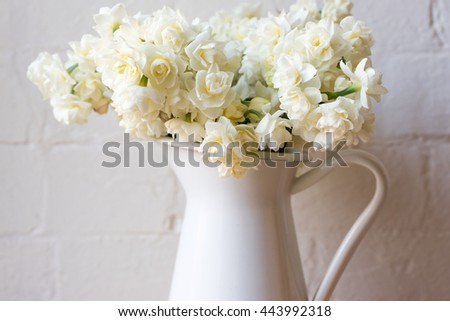 Close up of erlicheer daffodils in white jug against rustic white brick wall (selective focus)