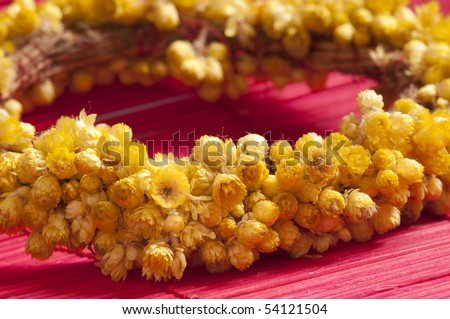 close up of everlasting  flower wreath - stock photo