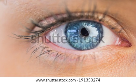 Close up of female blue eye on white background