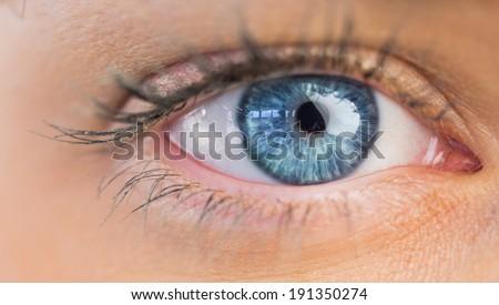 Close up of female blue eye on white background - stock photo