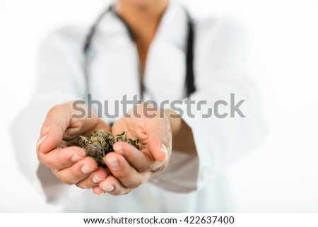 Close up of female doctor's hand holding marijuana buds. She is wearing a lab coat and is unrecognizable. The doctor is out of focus. Selective focus - stock photo