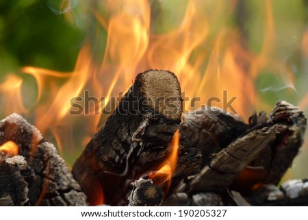 Close-up of fire burning pieces of wood, sitting in a pile, on a green background, ready for a barbecue.
