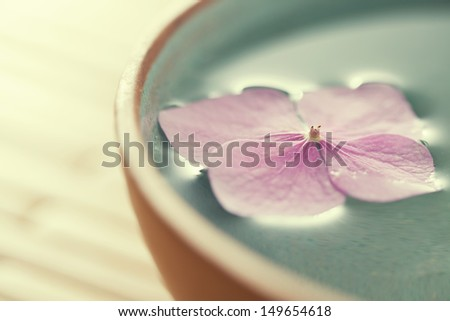 Close up of flowers floating in bowl of water - stock photo