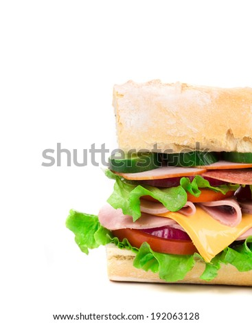 Close up of french sandwich. Macro. Whole background. - stock photo