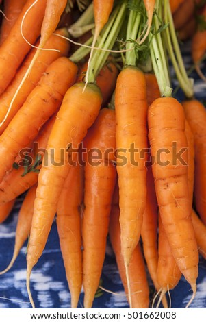 Close up of fresh carrots on display.