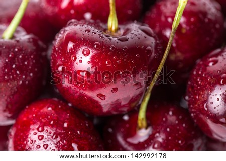 Close up of fresh cherry berries with water drops. - stock photo