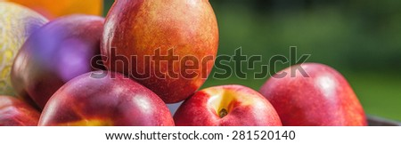 Close-up of fresh juicy ripe nectarines in basket - stock photo