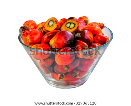 Close up of fresh oil palm fruits isolated on white background, selective focus. Clipping path included.   - stock photo