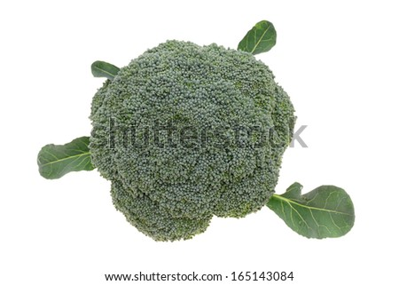 close up of fresh raw broccoli isolated on white background ? - stock photo