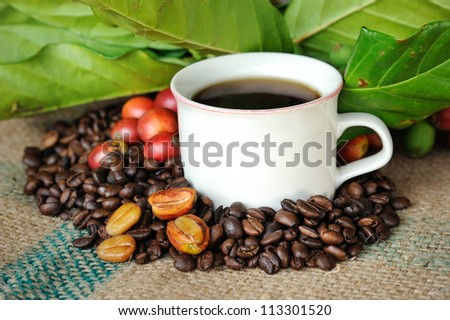 Close up of fresh raw coffee beans, coffee cup with leaf on texture background, selective focus.