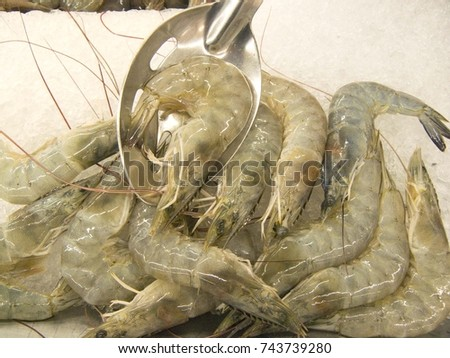 how to cook raw pacific white shrimp