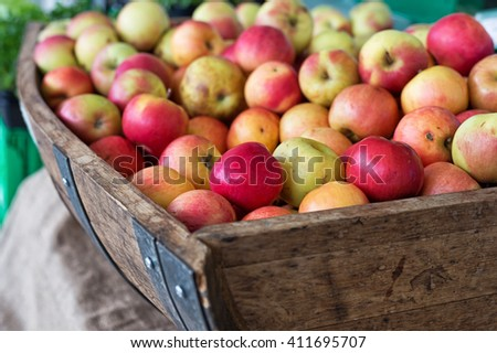Close up of fresh ripe apples in rustic wooden crate made out of wine barrel. Healthy Home grown food.