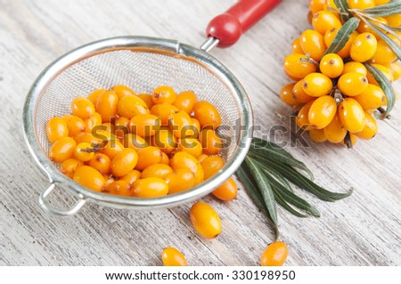 close up of fresh ripe sea buckthorns berries in  tea strainer on wooden background - stock photo