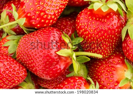Close up of fresh strawberry - Food frame background  - stock photo