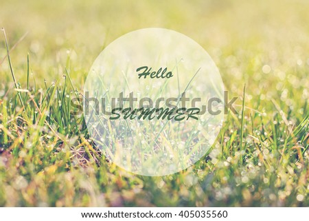 Close up of fresh thick grass with water drops in the early morning. green grass close up. Bright vibrant green grass. Bright vibrant green grass. Hello summer. - stock photo