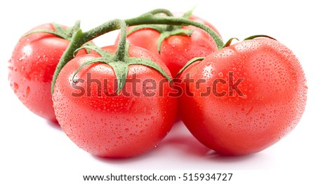 Close up of fresh wet tomatoes isolated on white background.