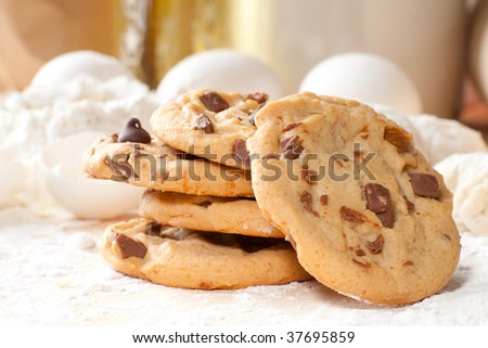 Close up of freshly cooked table - stock photo