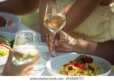 Close-up of friends having a glass of wine while having in restaurant