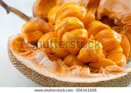 Close up of golden artocarpus integer (sweet jackfruit). - stock photo