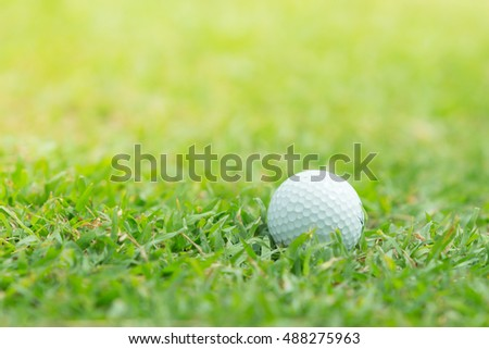 Close up of golf ball on green grass,Golf sport is Balance of Yin Yang.copy space for put text copy space for put text