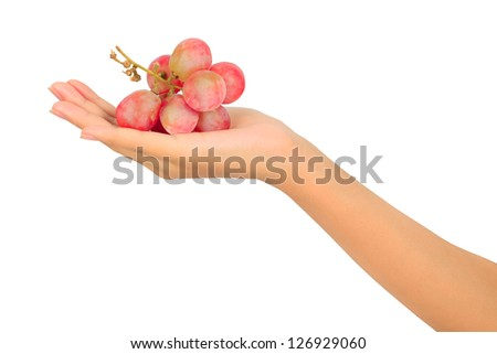 Close up of grapes on woman palm - stock photo