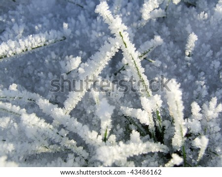 Close-up of green grass covered in frosty ice crystals - stock photo