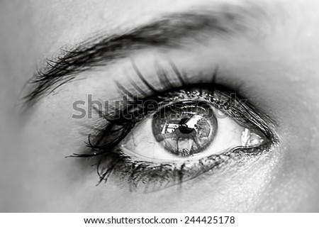 Close up of Grey female eye macro. Make-up - stock photo