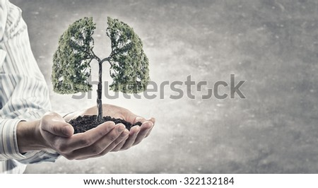 Close up of hand holding green tree concept - stock photo