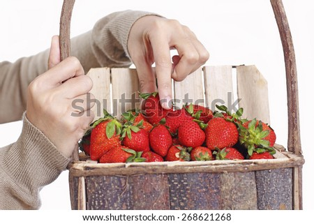 Close up of hands with strawberries in a wooden basket. Isolated in white background. - stock photo