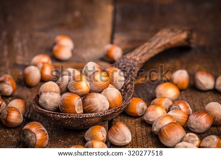 Close up of hazelnuts in wooden spoon - stock photo