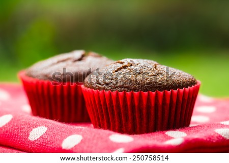 Close-up of healthy gluten free chocolate cupcakes - stock photo