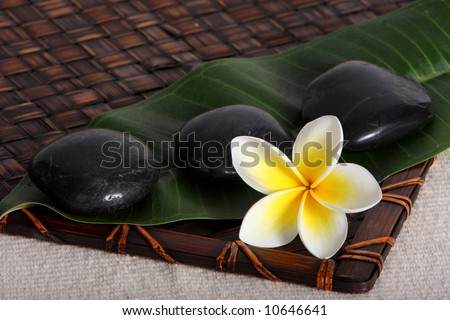 close up of hot massage river stones, with yellow and white frangiapani flower and leaf on bamboo matt - tropical day spa