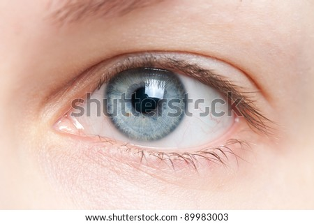 Close-up of human blue eye - stock photo