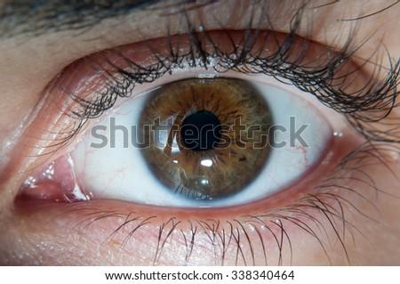 Close Up of human brown Eye - stock photo