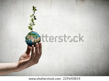 Close up of human hand holding sprout. Elements of this image are furnished by NASA