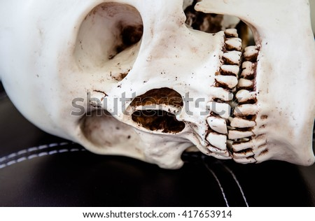 Close up of human skull,Death concept - stock photo