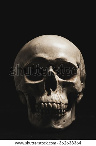 Close up of human skull. Symbol of death, evil and horror.