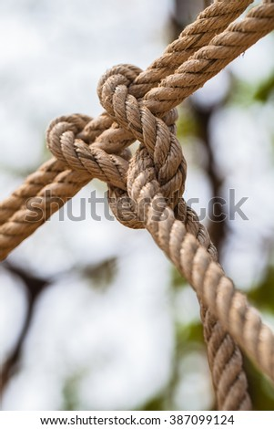 close up of knotted rope