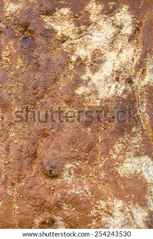 Close up of  loaf of bread traditionally roasted.   - stock photo