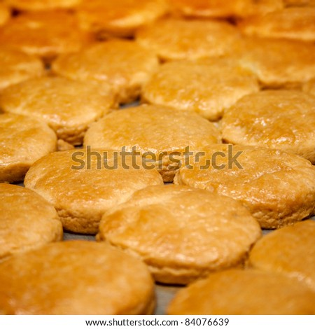 Close-up of lots of cookies - stock photo