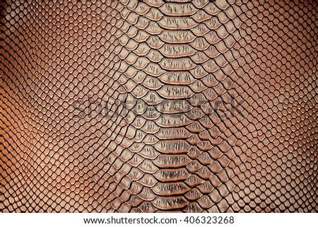 Close up of Luxury snake skin texture use for background - stock photo
