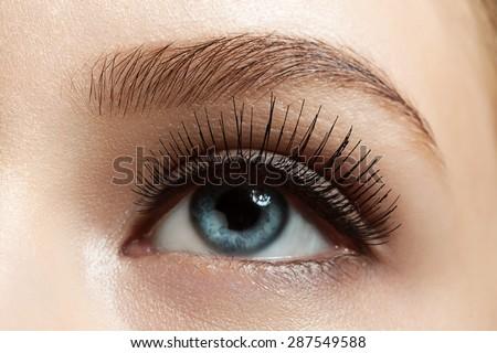 Close-up of make-up eye with long eyelashes and brown eyebrows - stock photo