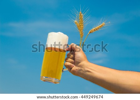 Close up of male hand holding glass mug of beer and wheat ears isolated on blue sky background. Beer industry and natural ingredients beverage concepts.   - stock photo