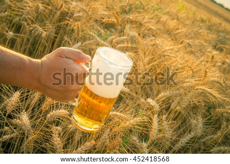 Close up of male hand holding glass mug of beer Wheat field and blue sky in the background. Beer industry and natural ingredients beverage concepts.   - stock photo