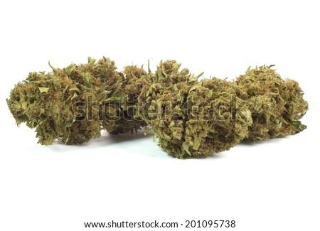 close up of marijuana bud - stock photo