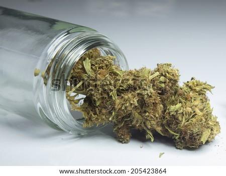 close up of medical marijuana - stock photo