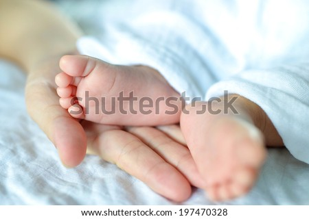 Close Up of Newborn Baby Feet in mother's hand - stock photo